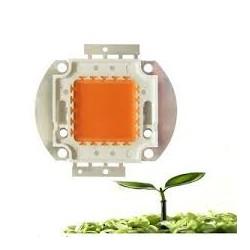 Led grow chip crecimiento plantas